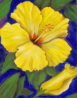 Janis Stevens Flower Paintings In Oil Night Blooming