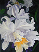Orchid Paintings Gallery