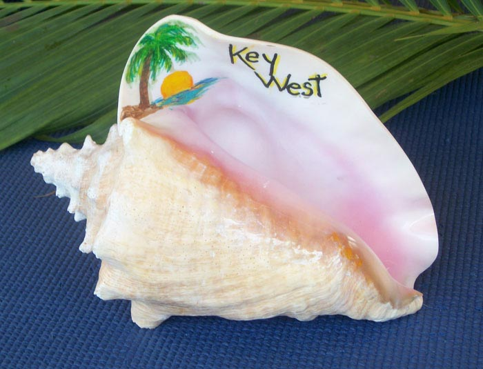Painted Conch Shell